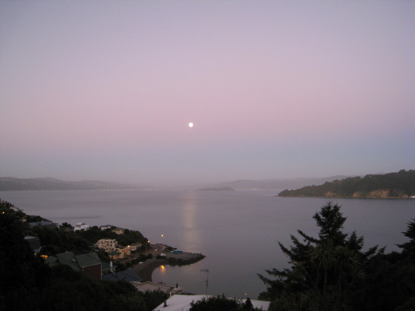 Moon rise over Wellington