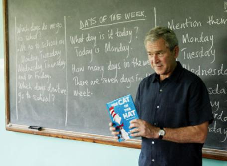 Bush in Tanzania